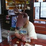 jelen plumlovský