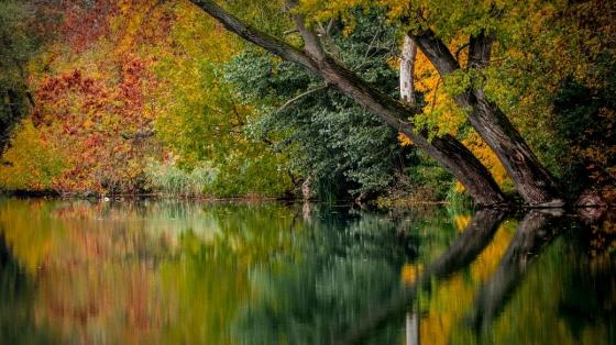 Pohled na podzimní krajinu patří k těm nejhezčím