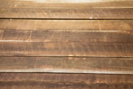 Tvrdé dřevo skvěle poslouží jako podlahová krytina ve frekventovaných místnostech, z měkkého zase vytvoříte nábytek podle svých představ.
