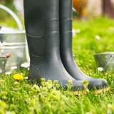 Připravujeme zahradu na blížící se jaro