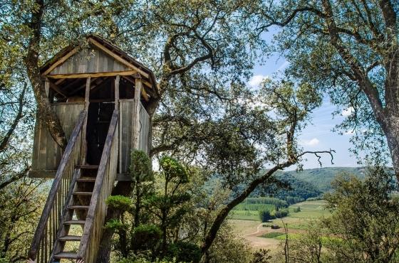 Domov v korunách stromů