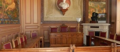 Řízení před Ústavním soudem ČR a Evropským soudem pro lidská práva