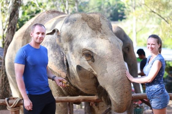 Sloní záchranná stanice v Thajsku