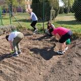 Příprava zahrady a okolí na sezonu 2020