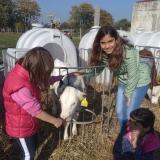 Výlet na Farmu do Štětovic