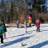 Zimní olympiáda DD 2021