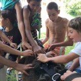 Letní tábor Jedovnice