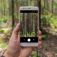 Digitalizace přírody
