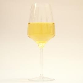 Chardonnay Morava